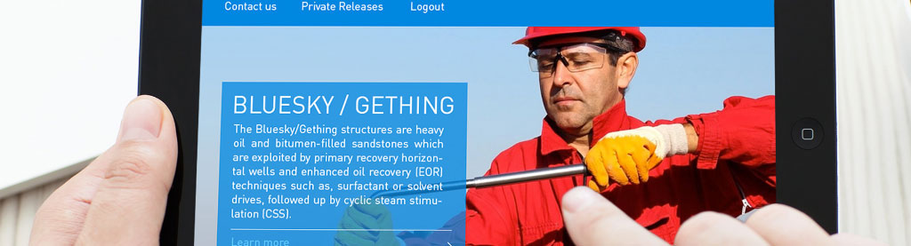 Website for an Oil Company